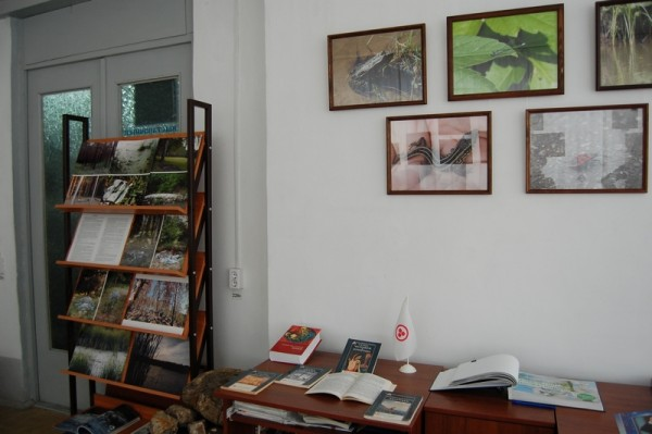 """На стенде слева представлены фотоработы под названием """"Знак беды"""""""